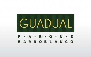 APARTAMENTOS EN RIONEGRO - GUADUAL