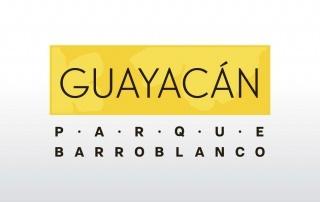 Proyecto Guayacán